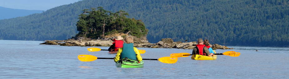 Kayak Rentals and Tours